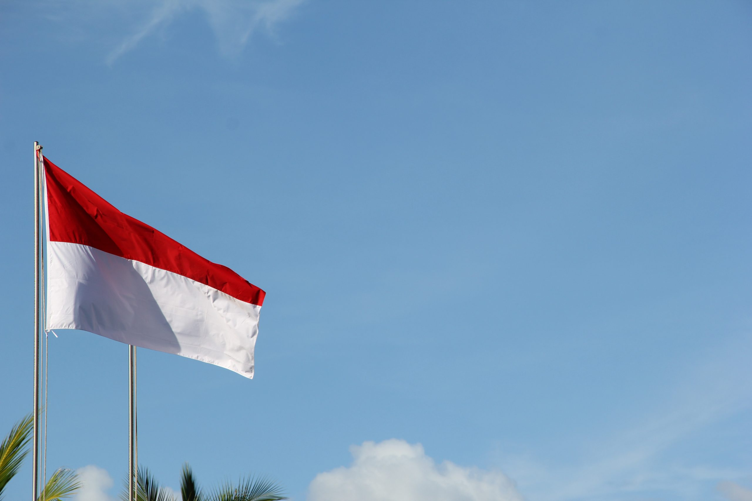 The Future of Impact Investment in Indonesia